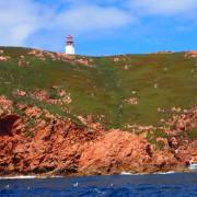 Berlenga Island Cliffs and Lighthouse